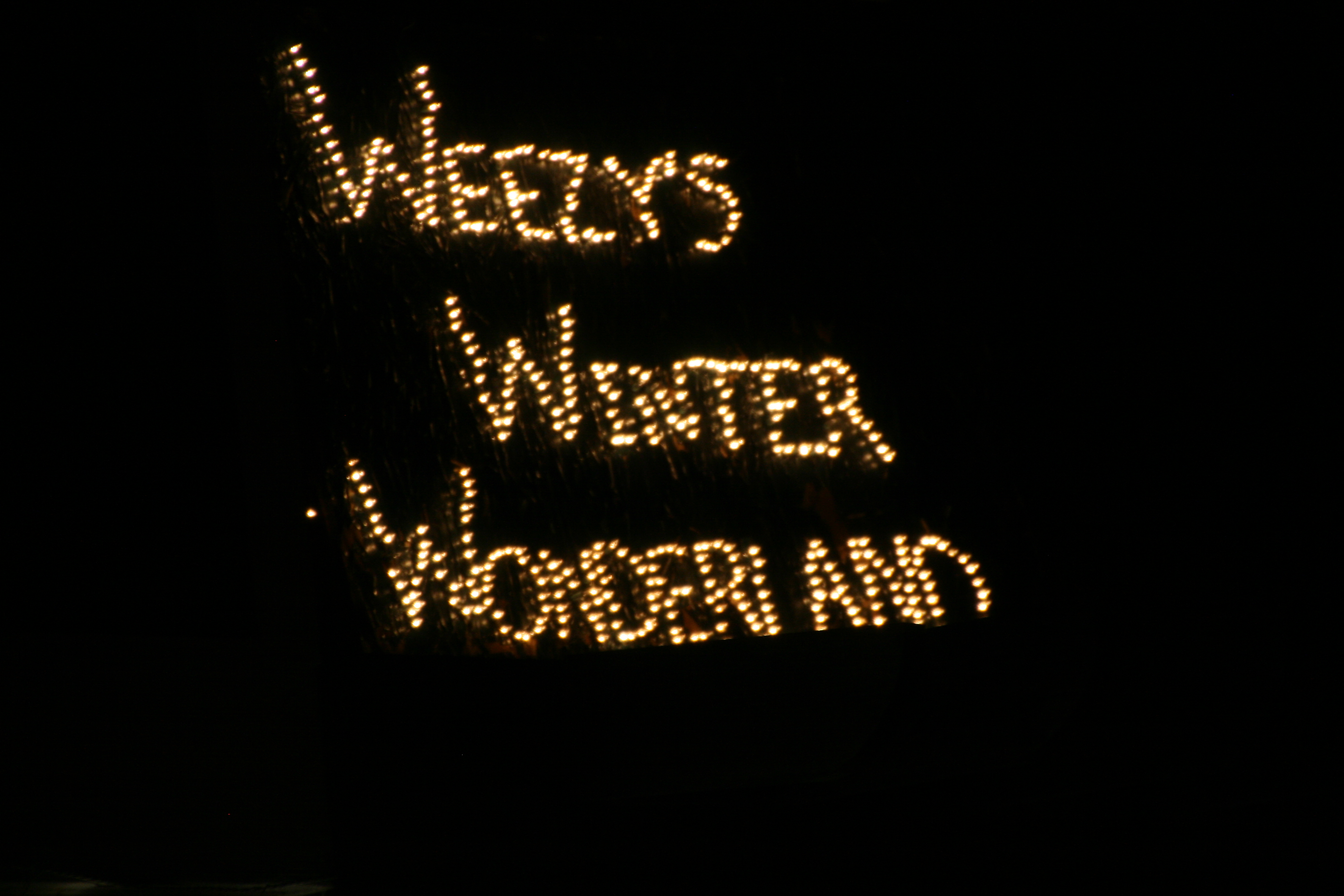 once the paint has dried take a string of christmas lights and push the lights through the holes plug it in and you have your very own lighted sign - Lighted Christmas Signs